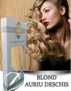 Easy Clip-On Silver Blond Auriu Deschis