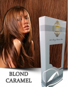 Easy Clip-On Silver Blond Caramel