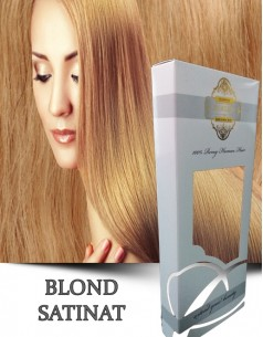 Easy Clip-On Silver Blond Satinat