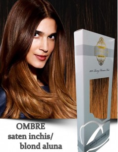 Easy Clip-On Bronz Ombre Saten Inchis Blond Aluna